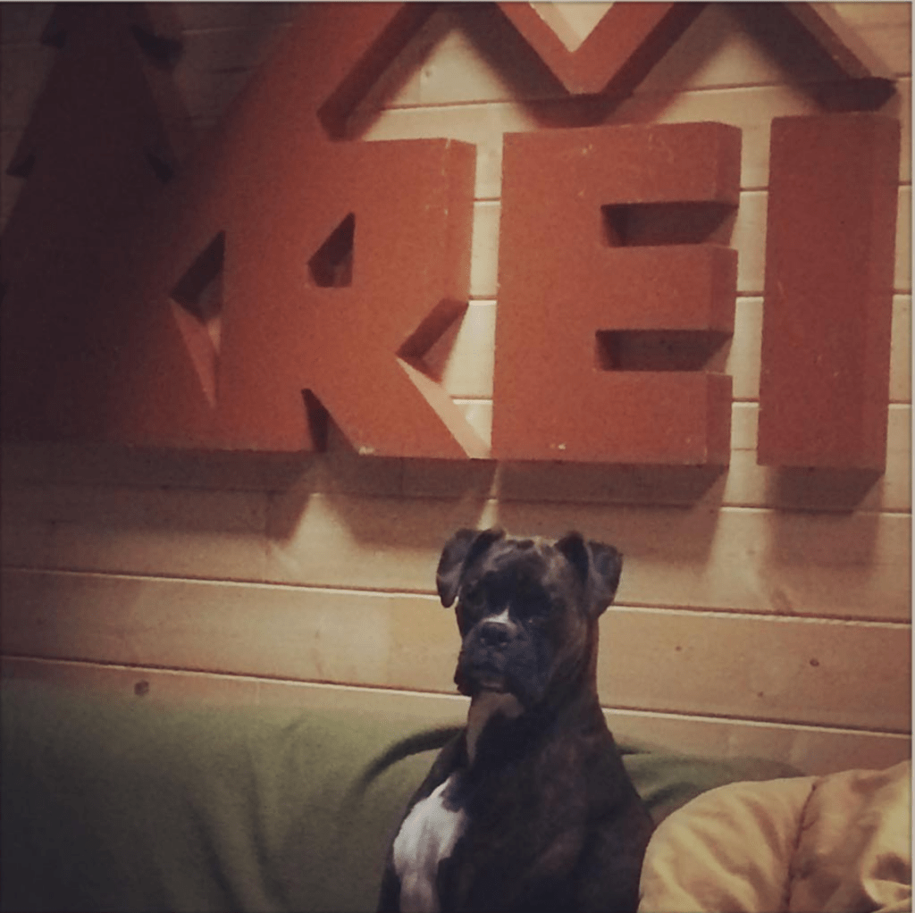 Vintage REI sign